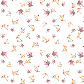 Lotus Peach