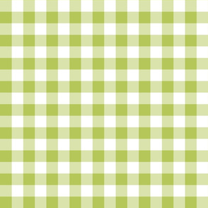 Gingham Green Apple