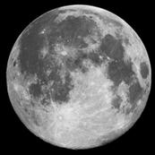 "Giant 16"" B&W Moon (fat quarter)"