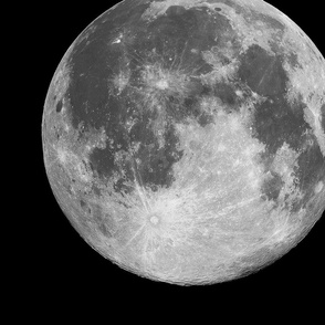 "Jumbo 16"" B&W Moon (fat quarter)"