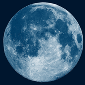 "Giant 16"" Blue Moon (fat quarter)"