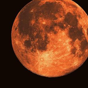 "jumbo 16"" harvest moon (fat quarter)"