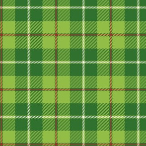 Galloway hunting tartan - white line weathered