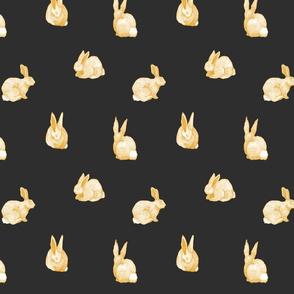 Glowing Bunnies