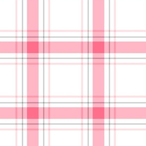 pink + grey plaid 1 LG