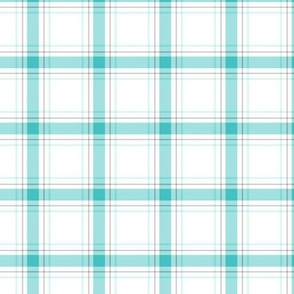 teal + grey plaid 1