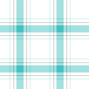 teal + grey plaid 1 LG