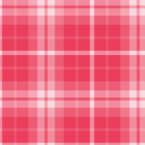plaid red 1 LG