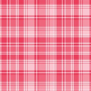 plaid red 2