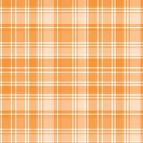 plaid orange 2