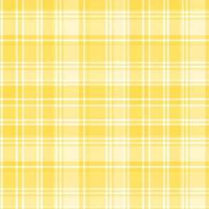 plaid yellow 2
