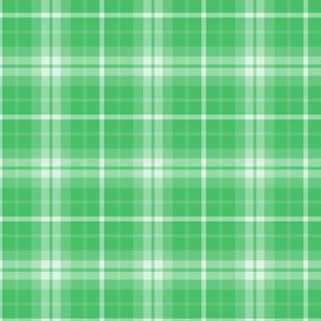 plaid green 1