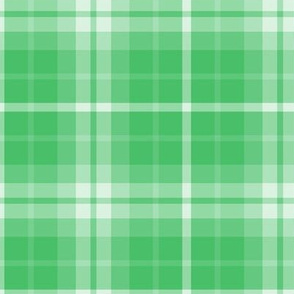 plaid green 1 LG