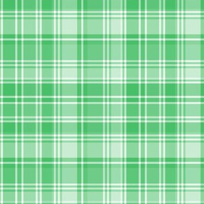 plaid green 2