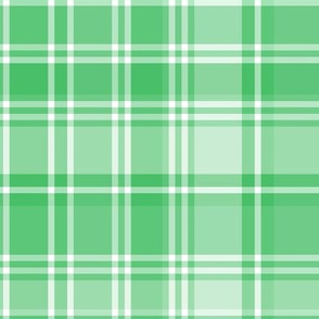 plaid green 2 LG