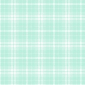 plaid mint green 1