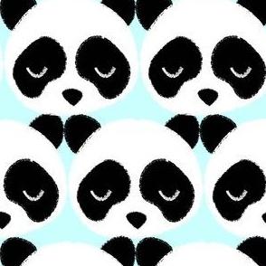 Panda Face Aqua