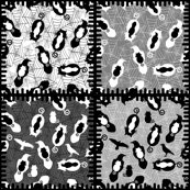 Rcats_v_raverns_patchwork_shop_thumb