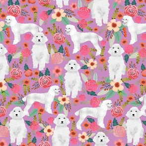 poodle white purple cute florals flowers best poodle dog fabric cute poodles fabric white standard poodle purple dog fabric
