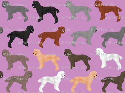 poodles purple cute poodle design poodle fabrics best poodles poodle fabric cute poodles standard poodle