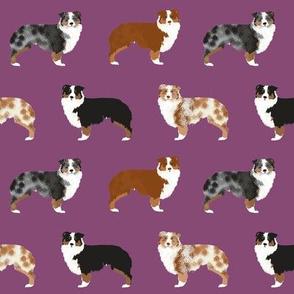 australian shepherd dogs cute pet dog aussie dogs red merle blue merle best dog fabric cute dogs best aussie dog fabrics sweet pet dog fabric