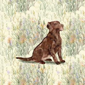 Chocolate Lab sitting in Wildflowers 2