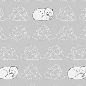 Arctic Fox Huddle