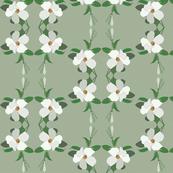 2941 Wonga Wonga_Vine#1-Green