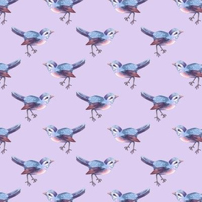 Little Songbird in Blue and Violet