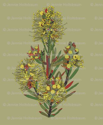 2941 Lemon Bottlebrush#1-Green