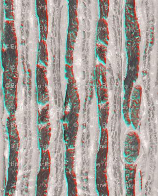 Retro 3D Bacon Slab Anaglyph