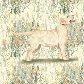 Yellow Lab in field of wildflowers 2