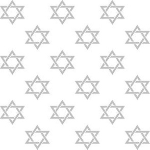 One Inch Matte Silver Star of David on White