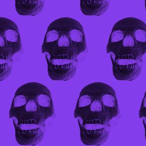 Black Skull on Purple