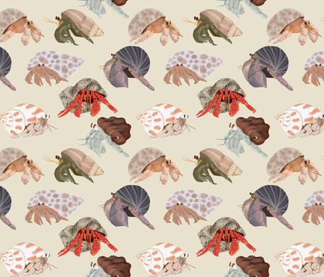 Hermit Crabs fabric by amy_hadden on Spoonflower - custom fabric
