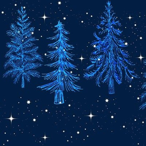 Pine tree forest, Blue Pine Forest //  pine trees // Pine forest, Woodland,