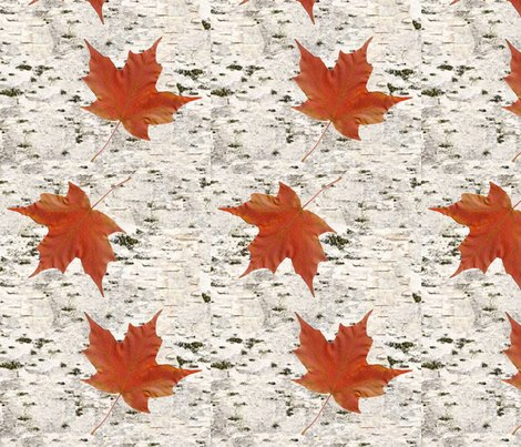 Birch_bark_with_maple_leaves_-_spoonflower_shop_preview