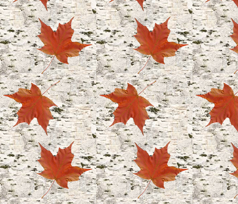 birch_bark_with_maple_leaves_-_spoonflower fabric by ewparker on Spoonflower - custom fabric