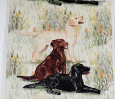 Rrrrchocolate_yellow_and_black_lab_in_wildflowers_2_comment_723541_thumb