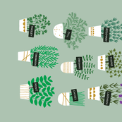 Herbs in pots tea towel (light)