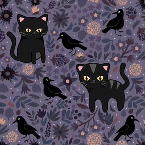 Black Cats and Ravens