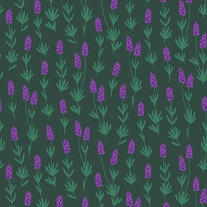 Lavender herb (dark green)