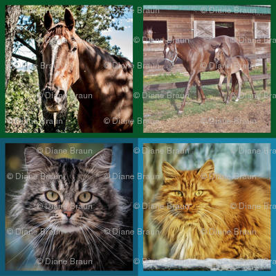 Horses_and_cats_5360x5360_final_preview