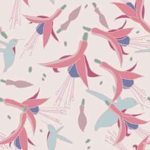 Fuchsia_Hummingbird_grey