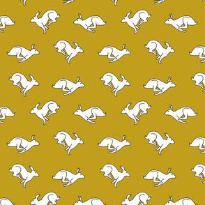 Bunny_Romp