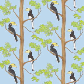 Hornbills in a tree blue background