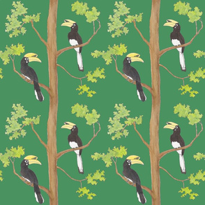 hornbills in the tree, green