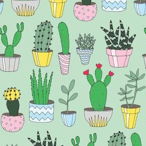 Cacti Green