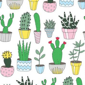 Cacti White