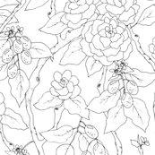 Gardenia_kumquat_black_white_150_spoon_shop_thumb